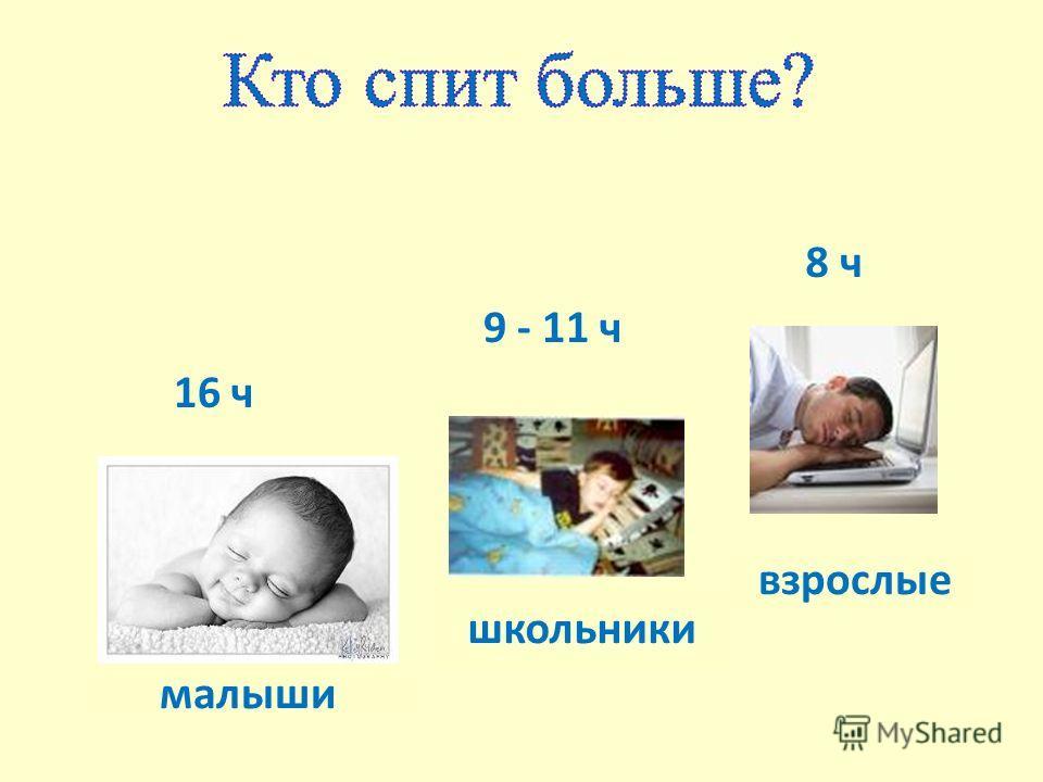 малыши школьники взрослые 16 ч 8 ч 9 - 11 ч