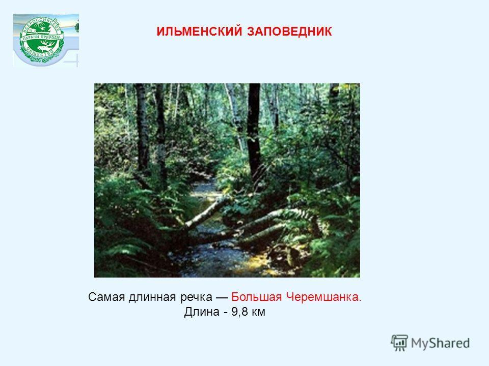 Самая длинная речка Большая Черемшанка. Длина - 9,8 км ИЛЬМЕНСКИЙ ЗАПОВЕДНИК