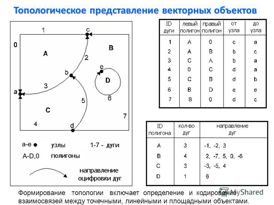 Топологическое представление векторных объектов Формирование топологии включает определение и кодирование взаимосвязей между точечными, линейными и площадными объектами.