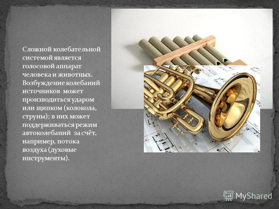 Сложной колебательной системой является голосовой аппарат человека и животных. Возбуждение колебаний источников может производиться ударом или щипком (колокола, струны); в них может поддерживаться режим автоколебаний за счёт, например, потока воздуха
