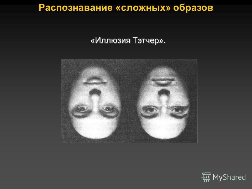 «Иллюзия Тэтчер». Распознавание «сложных» образов