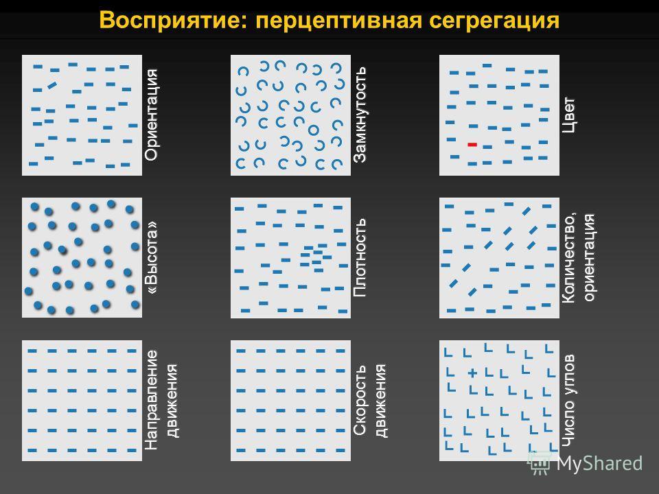 Восприятие: перцептивная сегрегация ОриентацияЗамкнутостьЦвет «Высота»ПлотностьКоличество,ориентация НаправлениедвиженияСкоростьдвижения Число углов