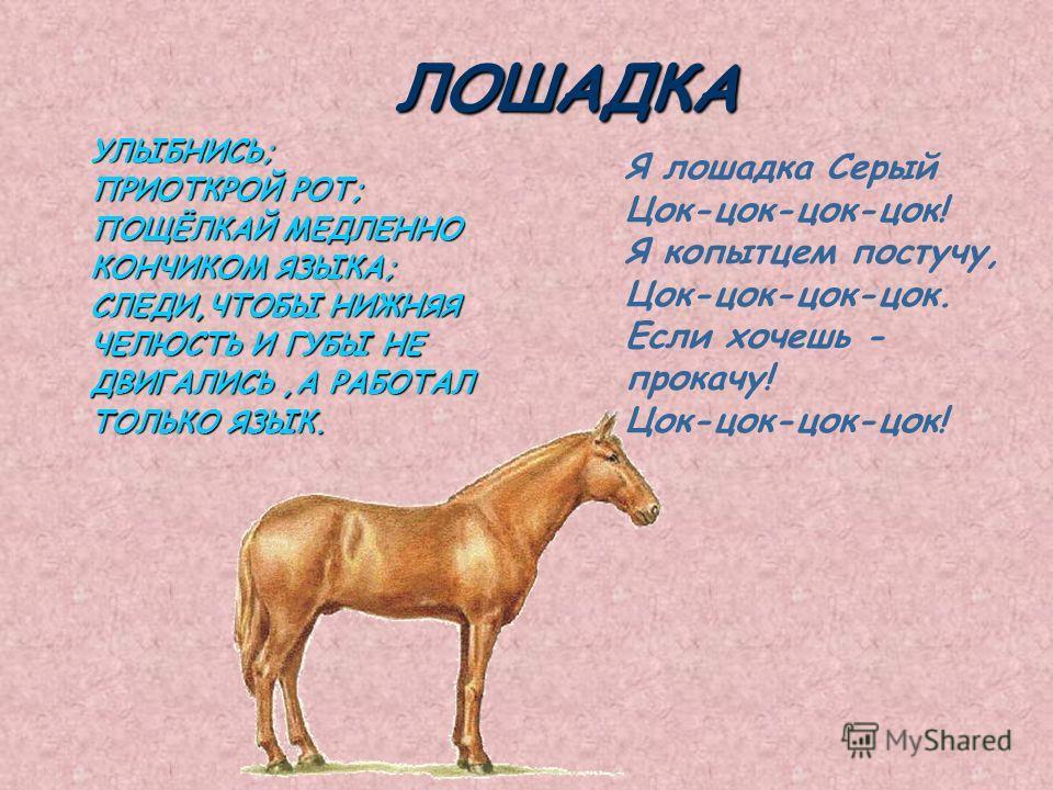 ЛОШАДКА УЛЫБНИСЬ; ПРИОТКРОЙ РОТ; ПОЩЁЛКАЙ МЕДЛЕННО КОНЧИКОМ ЯЗЫКА; СЛЕДИ,ЧТОБЫ НИЖНЯЯ ЧЕЛЮСТЬ И ГУБЫ НЕ ДВИГАЛИСЬ,А РАБОТАЛ ТОЛЬКО ЯЗЫК. Я лошадка Серый Цок-цок-цок-цок! Я копытцем постучу, Цок-цок-цок-цок. Если хочешь - прокачу! Цок-цок-цок-цок!