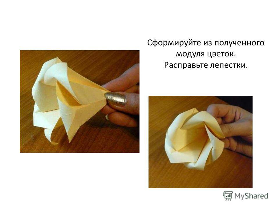Сформируйте из полученного модуля цветок. Расправьте лепестки.