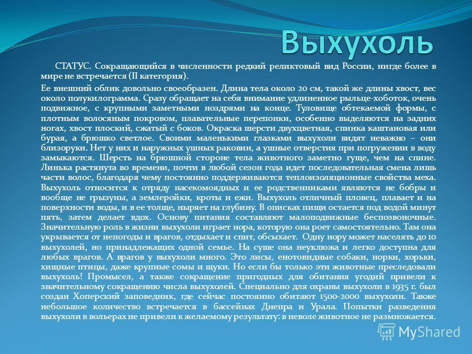 СТАТУС. Сокращающийся в численности редкий реликтовый вид России, нигде более в мире не встречается (II категория). Ее внешний облик довольно своеобразен. Длина тела около 20 см, такой же длины хвост, вес около полукилограмма. Сразу обращает на себя