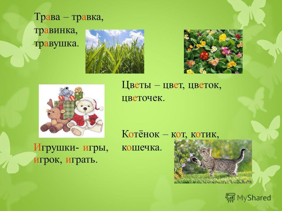 Трава – травка, травинка, травушка. Цветы – цвет, цветок, цветочек. Котёнок – кот, котик, кошечка. Игрушки- игры, игрок, играть.