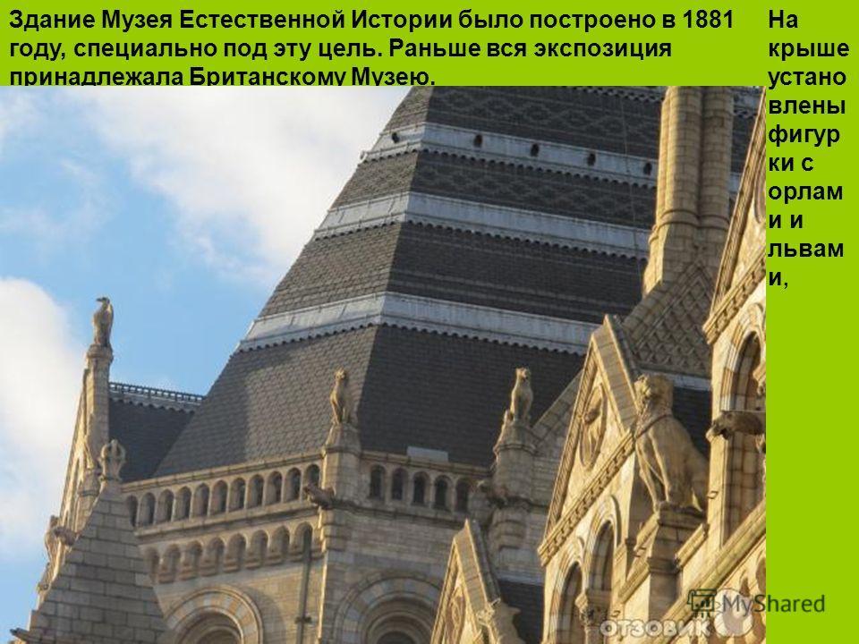 Здание Музея Естественной Истории было построено в 1881 году, специально под эту цель. Раньше вся экспозиция принадлежала Британскому Музею. На крыше устано влены фигур ки с орлам и и львам и,