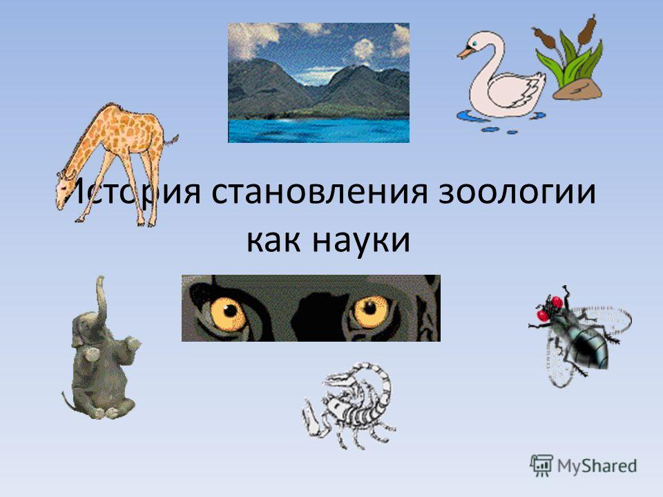 История становления зоологии как науки