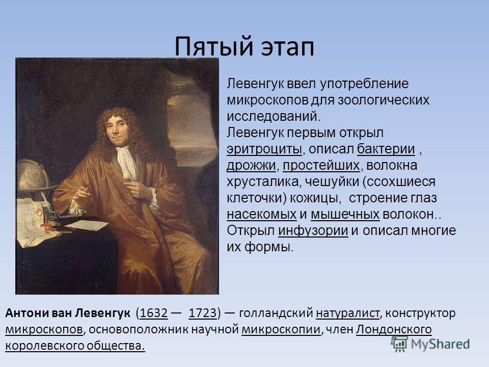 Пятый этап Антони ван Левенгук (1632 1723) голландский натуралист, конструктор микроскопов, основоположник научной микроскопии, член Лондонского королевского общества. Левенгук ввел употребление микроскопов для зоологических исследований. Левенгук пе