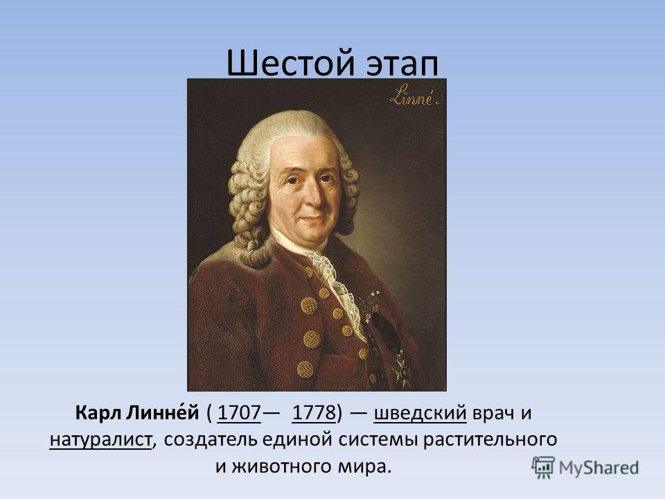 Шестой этап Карл Линне́й ( 1707 1778) шведский врач и натуралист, создатель единой системы растительного и животного мира.