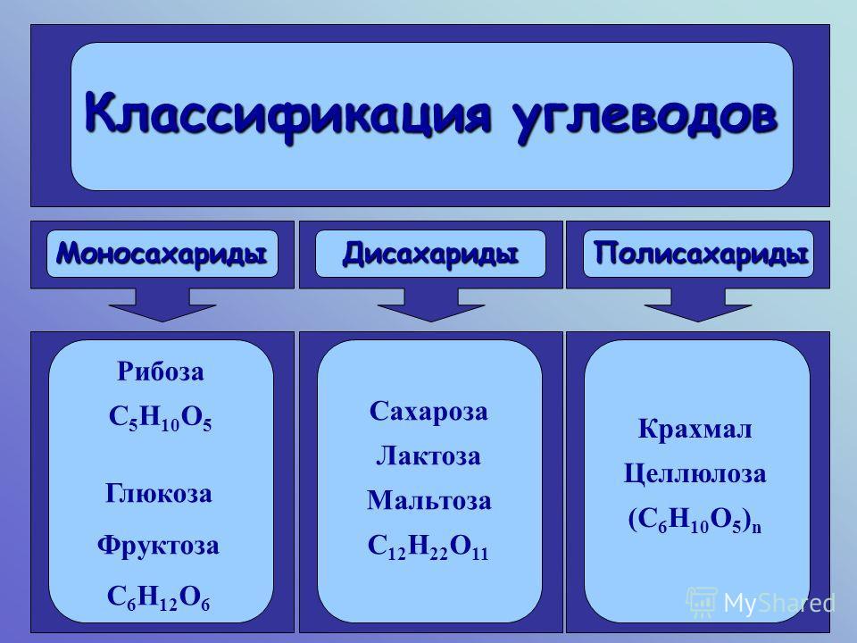 Классификация углеводов Моносахариды Дисахариды Полисахариды Рибоза С 5 Н 10 О 5 Глюкоза Фруктоза С 6 Н 12 О 6 Сахароза Лактоза Мальтоза С 12 Н 22 О 11 Крахмал Целлюлоза (С 6 Н 10 О 5 ) n