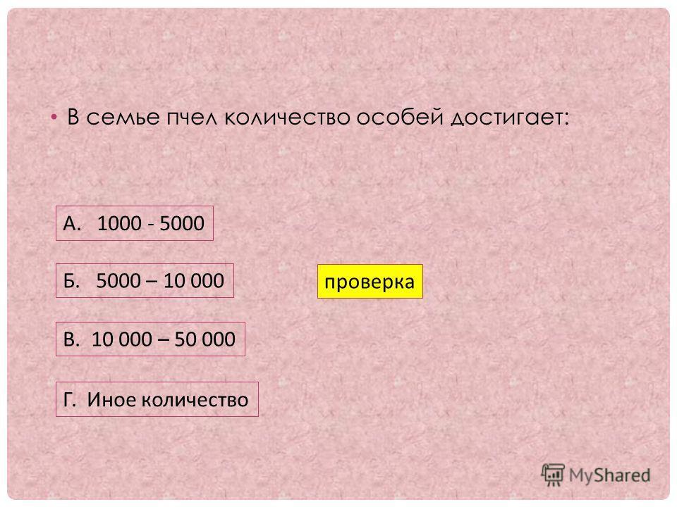 В семье пчел количество особей достигает: А. 1000 - 5000 Б. 5000 – 10 000 В. 10 000 – 50 000 Г. Иное количество проверка