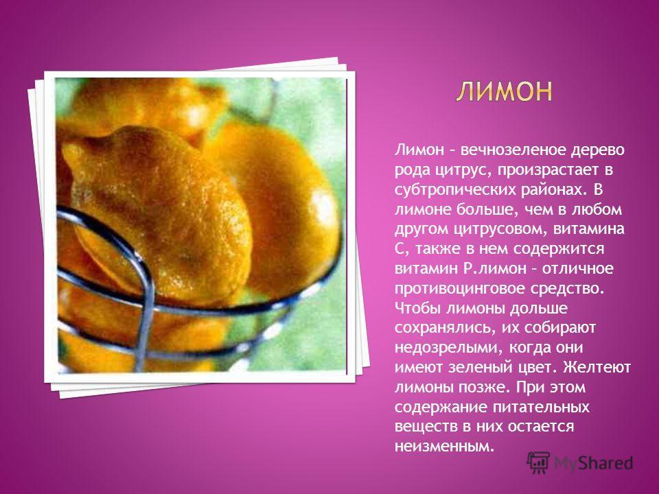 Лимон – вечнозеленое дерево рода цитрус, произрастает в субтропических районах. В лимоне больше, чем в любом другом цитрусовом, витамина С, также в нем содержится витамин Р.лимон – отличное противоцинговое средство. Чтобы лимоны дольше сохранялись, и