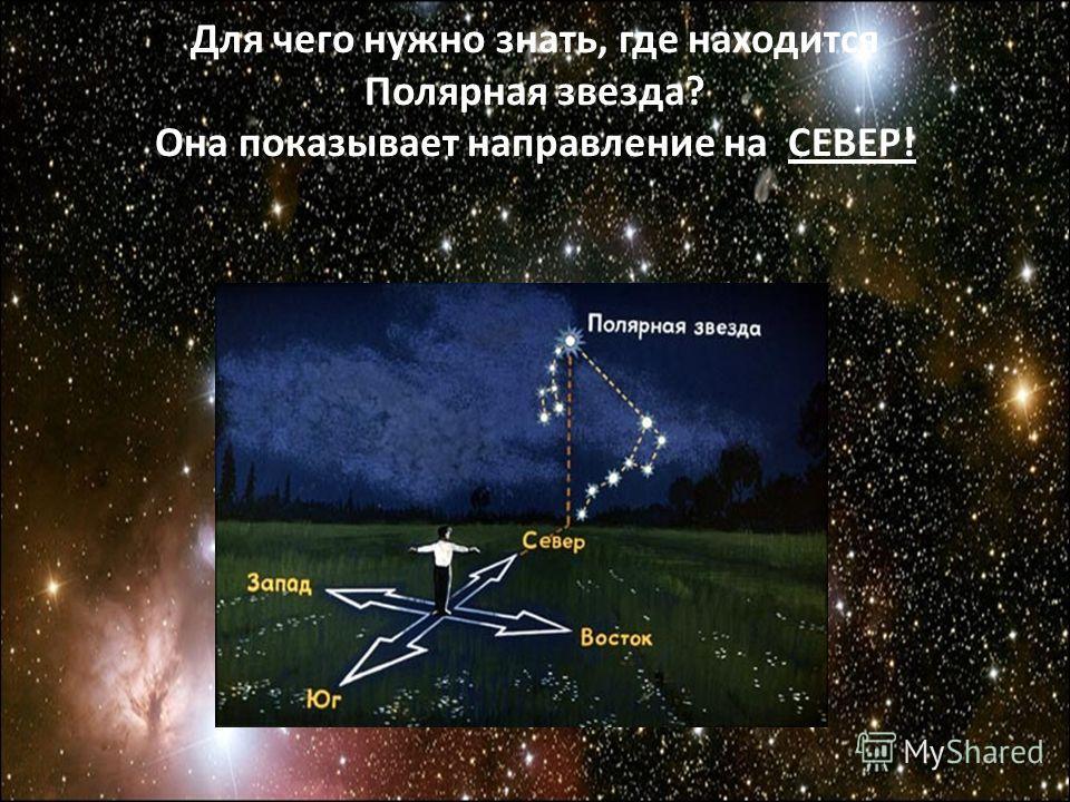 Для чего нужно знать, где находится Полярная звезда? Она показывает направление на СЕВЕР!