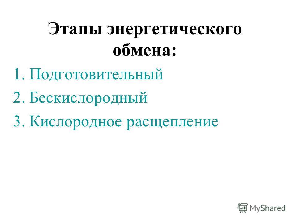 Этапы энергетического обмена: 1. Подготовительный 2. Бескислородный 3. Кислородное расщепление