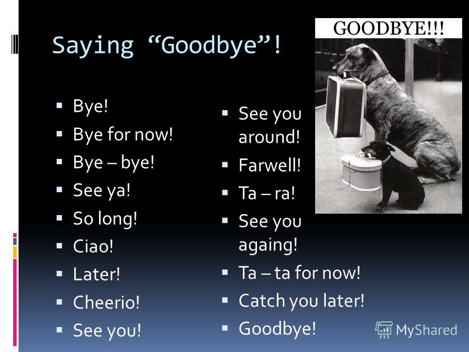 Saying Goodbye! Bye! Bye for now! Bye – bye! See ya! So long! Ciao! Later! Cheerio! See you! See you around! Farwell! Ta – ra! See you againg! Ta – ta for now! Catch you later! Goodbye!