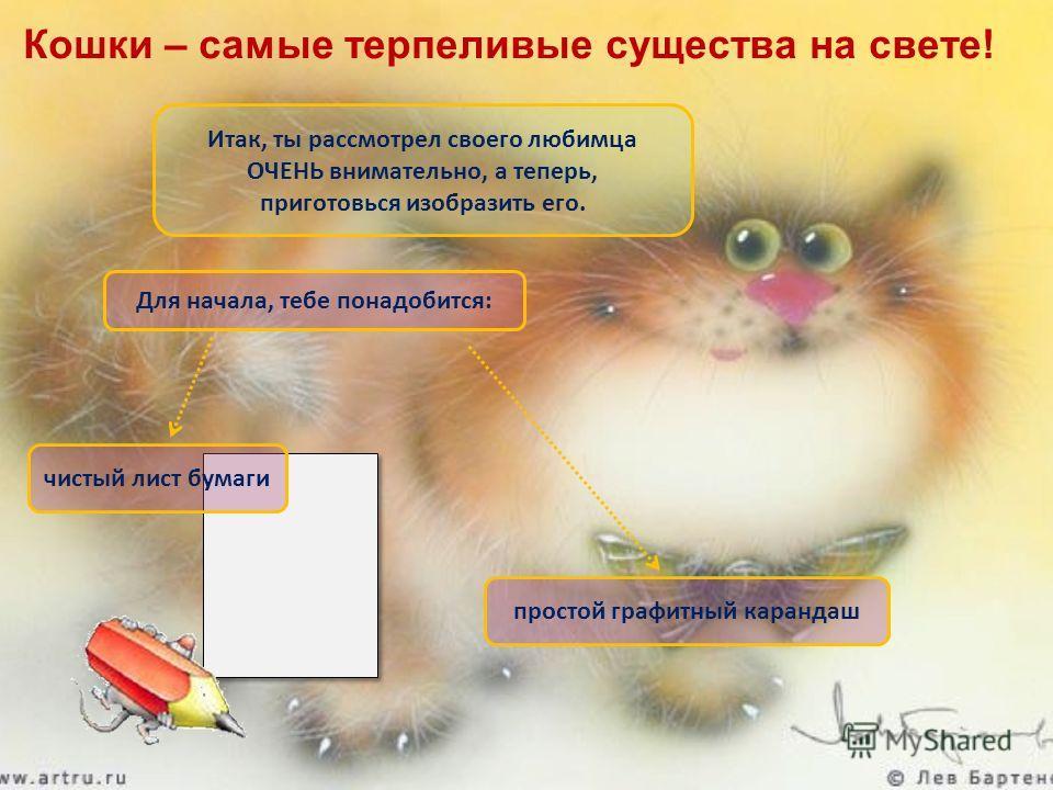 Итак, ты рассмотрел своего любимца ОЧЕНЬ внимательно, а теперь, приготовься изобразить его. чистый лист бумаги простой графитный карандаш Для начала, тебе понадобится: Кошки – самые терпеливые существа на свете!