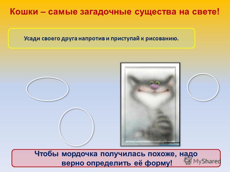 Кошки – самые загадочные существа на свете! Усади своего друга напротив и приступай к рисованию. Чтобы мордочка получилась похоже, надо верно определить её форму!