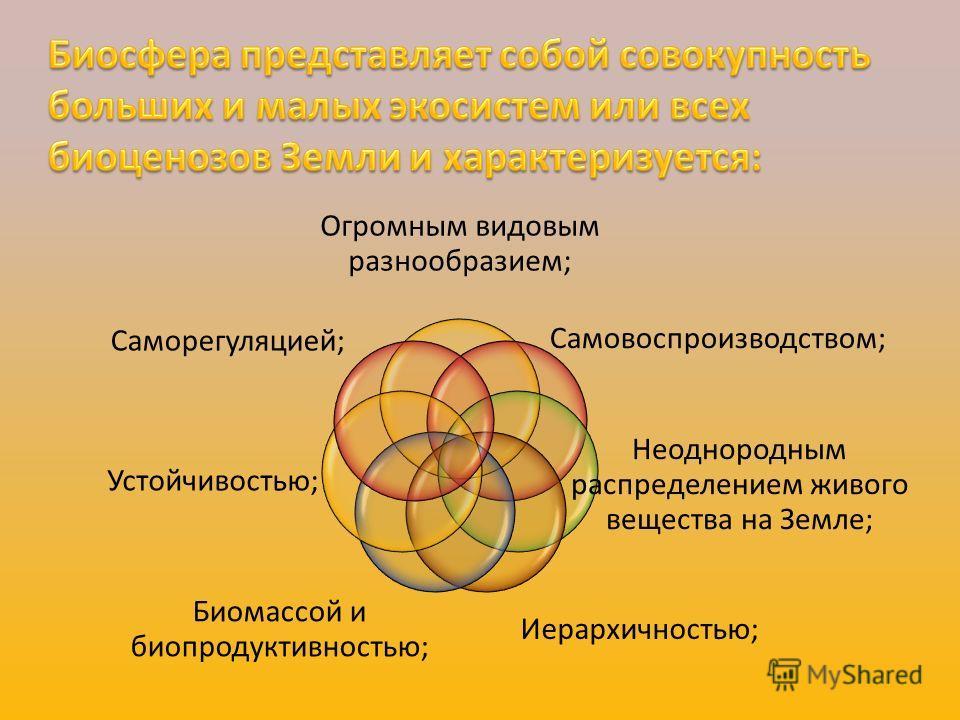 Огромным видовым разнообразием; Самовоспроизводством; Неоднородным распределением живого вещества на Земле; Иерархичностью; Биомассой и биопродуктивностью; Устойчивостью; Саморегуляцией;