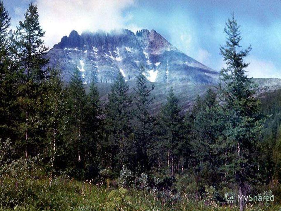 Уральские горы. Г. Народная 1895 м