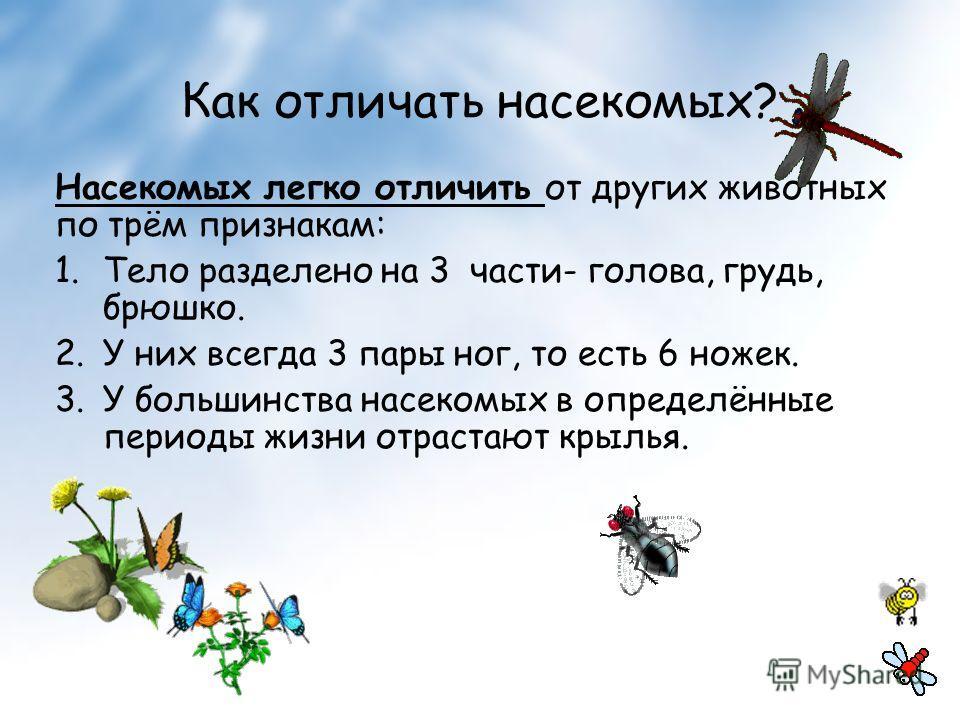 Как отличать насекомых? Насекомых легко отличить от других животных по трём признакам: 1.Тело разделено на 3 части- голова, грудь, брюшко. 2.У них всегда 3 пары ног, то есть 6 ножек. 3.У большинства насекомых в определённые периоды жизни отрастают кр