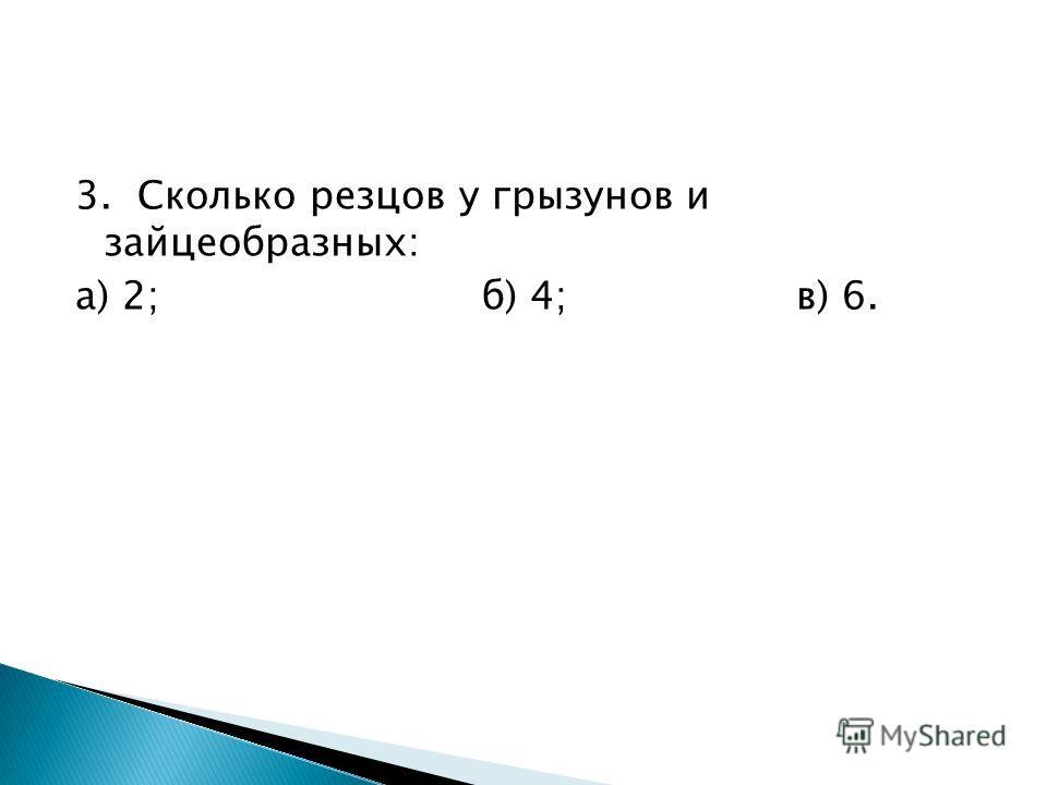 3. Сколько резцов у грызунов и зайцеобразных: а) 2;б) 4;в) 6.