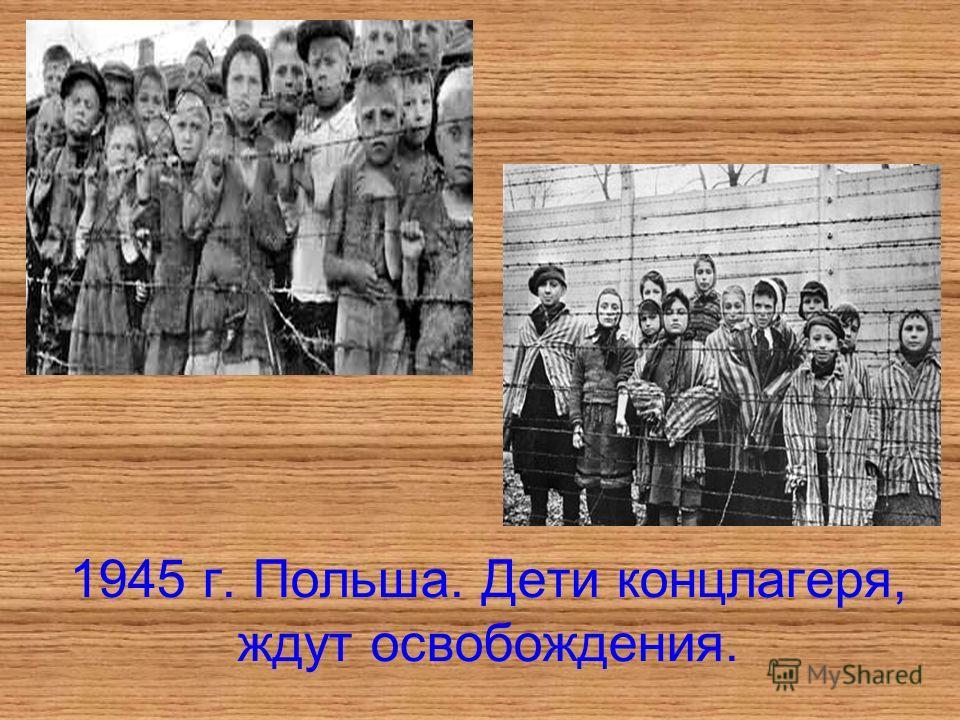 1945 г. Польша. Дети концлагеря, ждут освобождения.