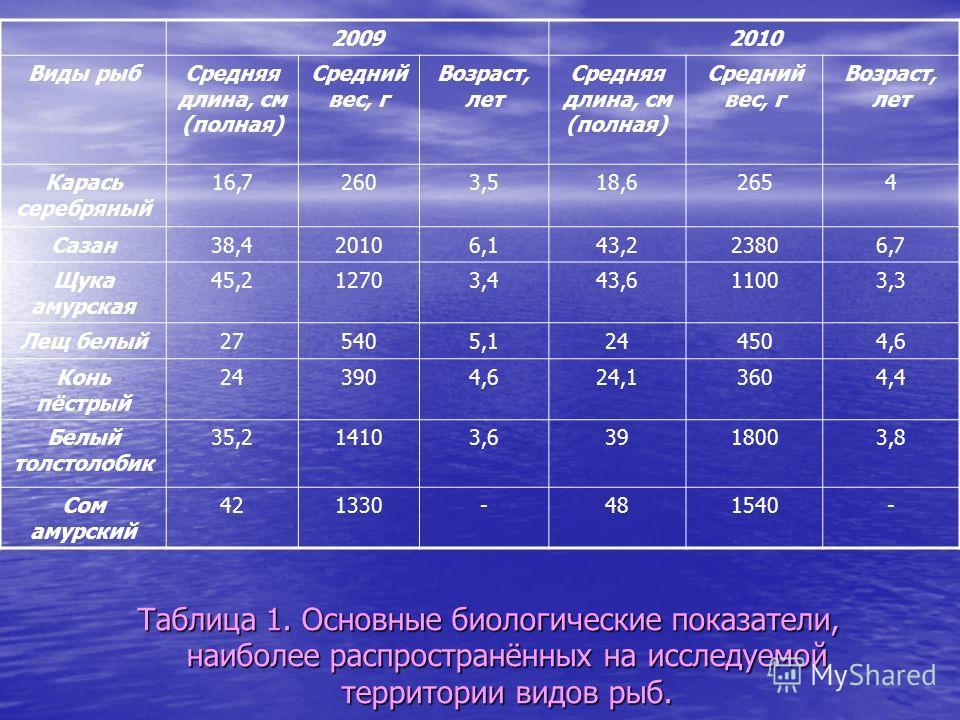 Таблица 1. Основные биологические показатели, наиболее распространённых на исследуемой территории видов рыб. 20092010 Виды рыбСредняя длина, см (полная) Средний вес, г Возраст, лет Средняя длина, см (полная) Средний вес, г Возраст, лет Карась серебря