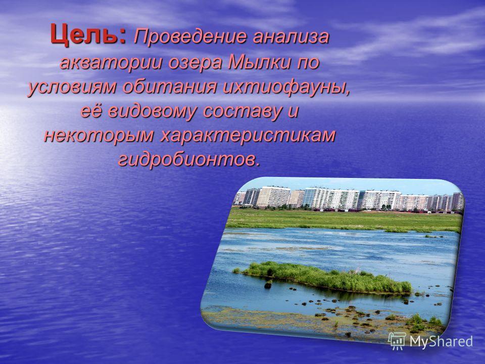 Цель: Проведение анализа акватории озера Мылки по условиям обитания ихтиофауны, её видовому составу и некоторым характеристикам гидробионтов.