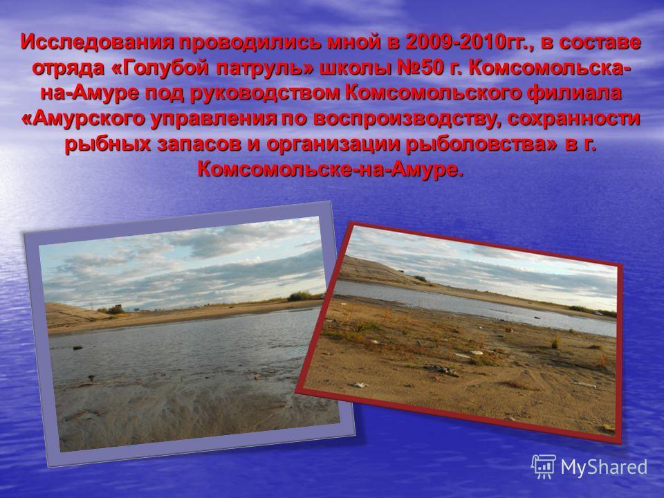 Исследования проводились мной в 2009-2010гг., в составе отряда «Голубой патруль» школы 50 г. Комсомольска- на-Амуре под руководством Комсомольского филиала «Амурского управления по воспроизводству, сохранности рыбных запасов и организации рыболовства