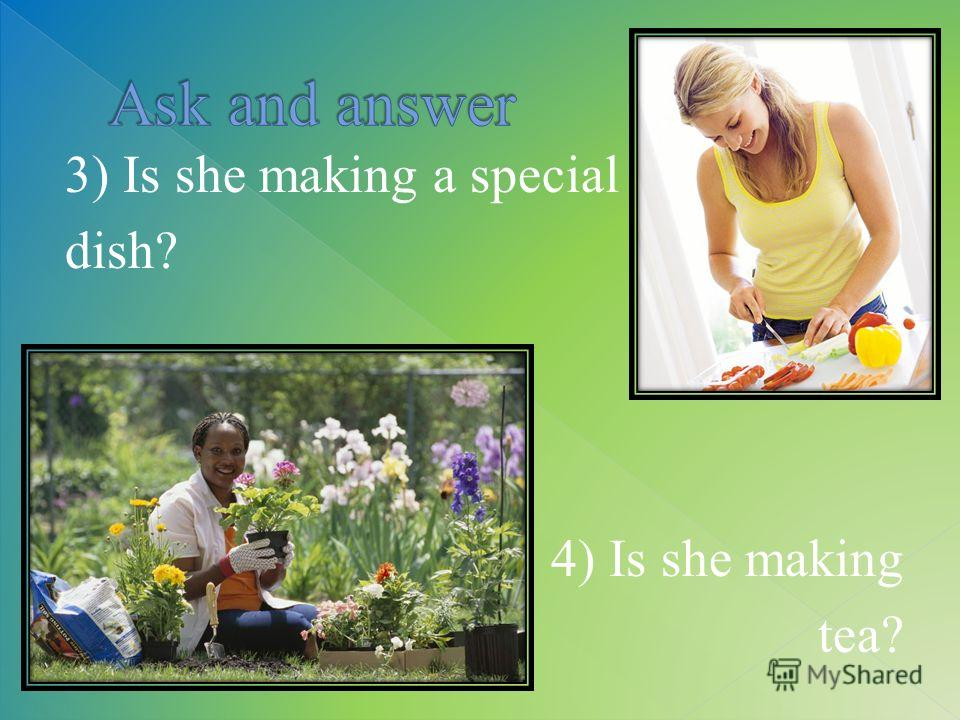 3) Is she making a special dish? 4) Is she making tea?