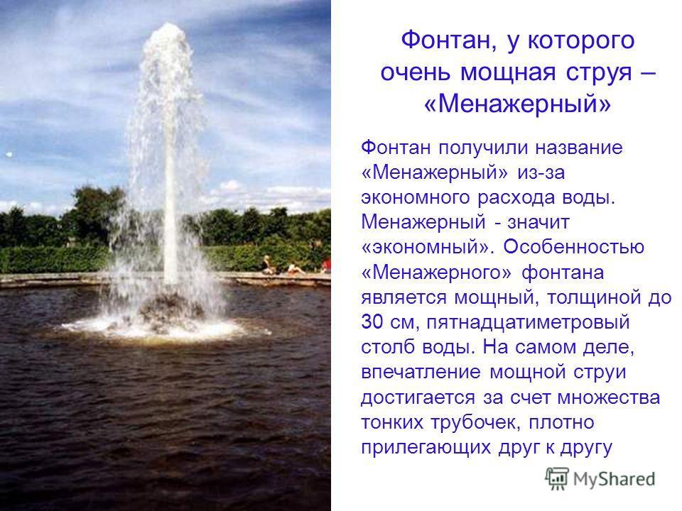 Фонтан, у которого очень мощная струя – «Менажерный» Фонтан получили название «Менажерный» из-за экономного расхода воды. Менажерный значит «экономный». Особенностью «Менажерного» фонтана является мощный, толщиной до 30 см, пятнадцатиметровый столб в