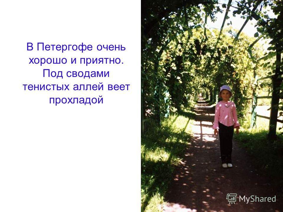 В Петергофе очень хорошо и приятно. Под сводами тенистых аллей веет прохладой