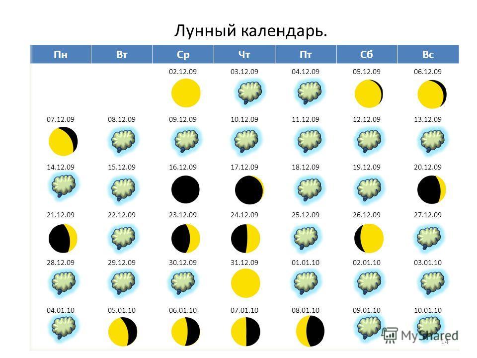 Лунный календарь. 14