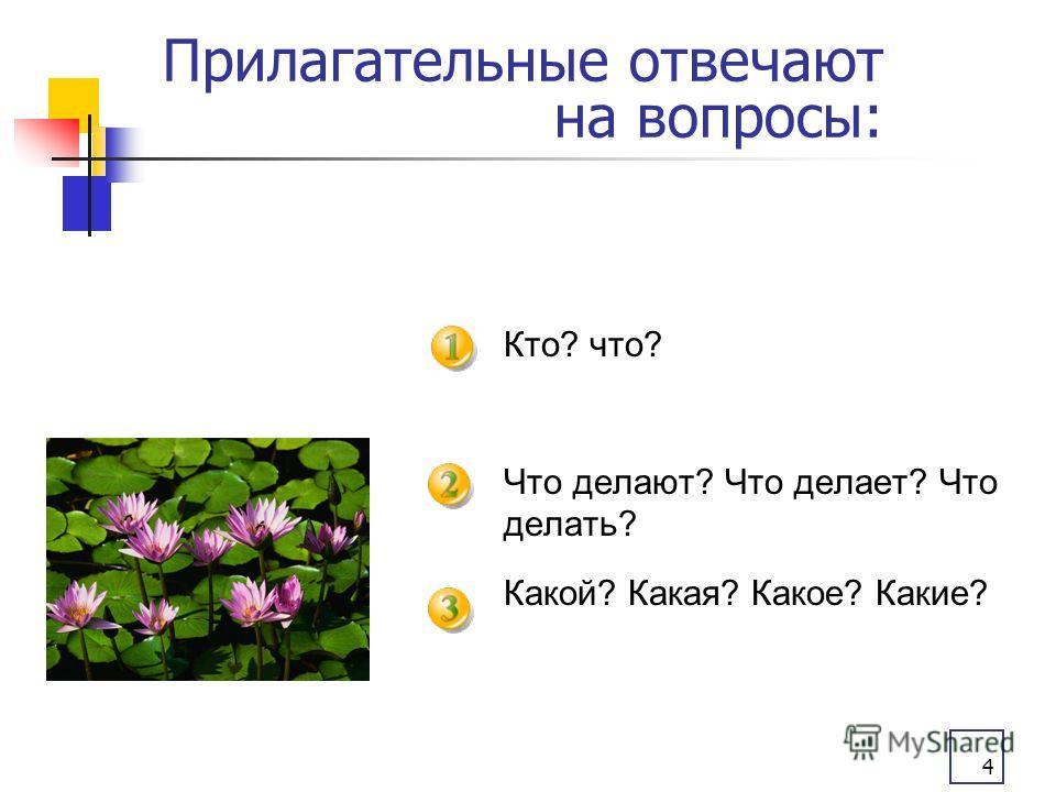 4 Прилагательные отвечают на вопросы: Кто? что? Что делают? Что делает? Что делать? Какой? Какая? Какое? Какие?
