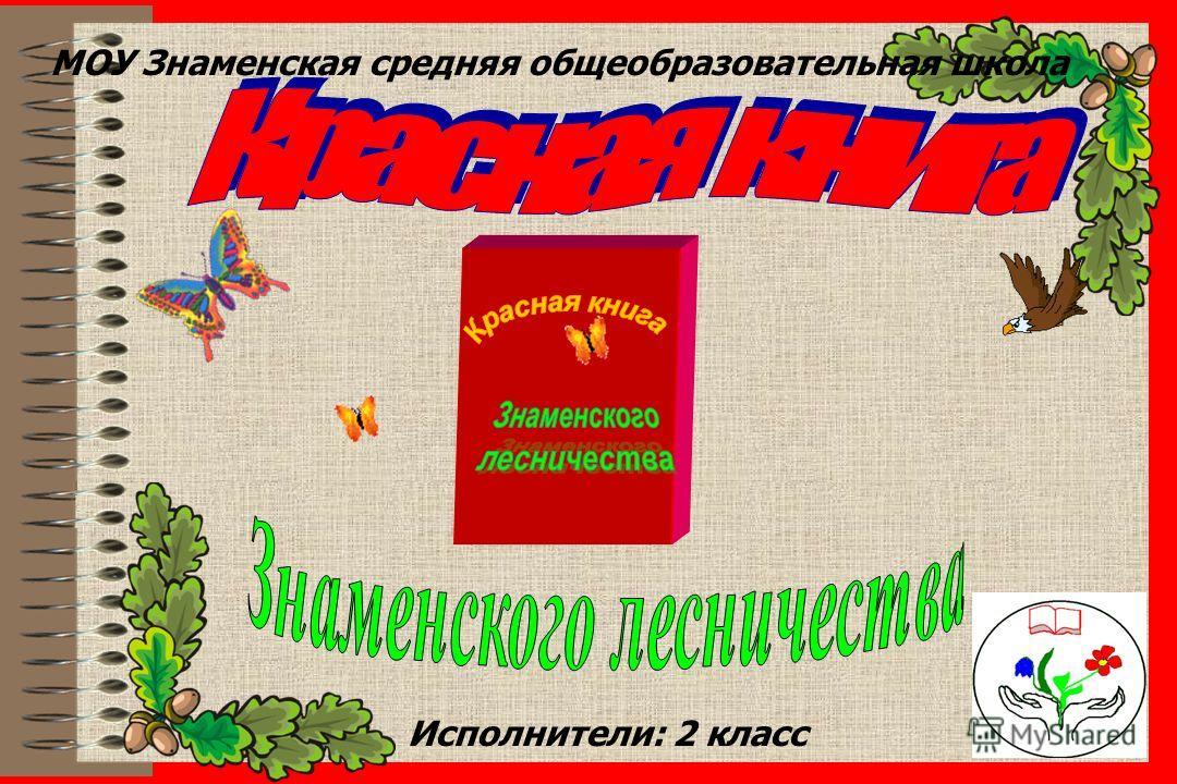 user МОУ Знаменская средняя общеобразовательная школа Исполнители: 2 класс