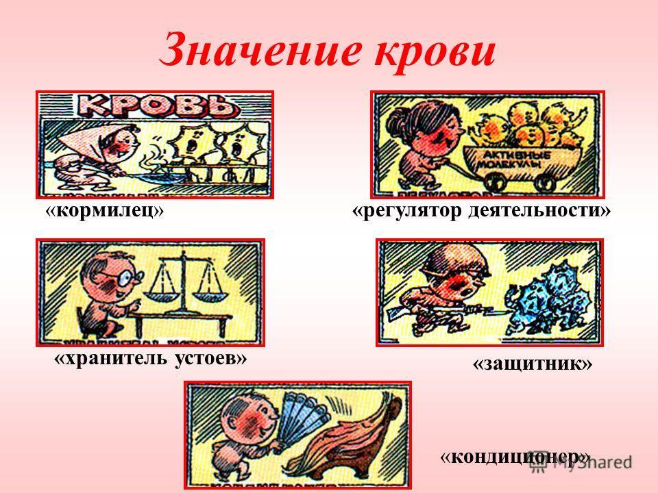 Значение крови «кормилец»«регулятор деятельности» «защитник» «кондиционер» «хранитель устоев»