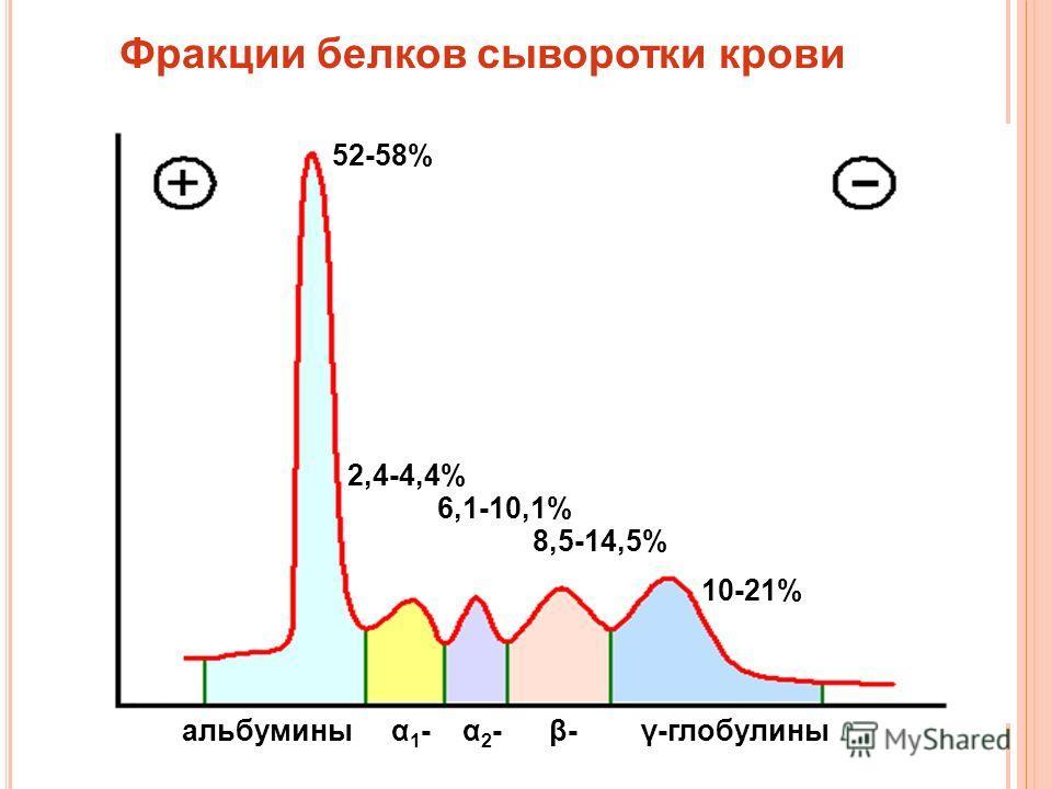 Фракции белков сыворотки крови 52-58% 2,4-4,4% 6,1-10,1% 8,5-14,5% 10-21% альбумины α 1 - α 2 - β- γ-глобулины