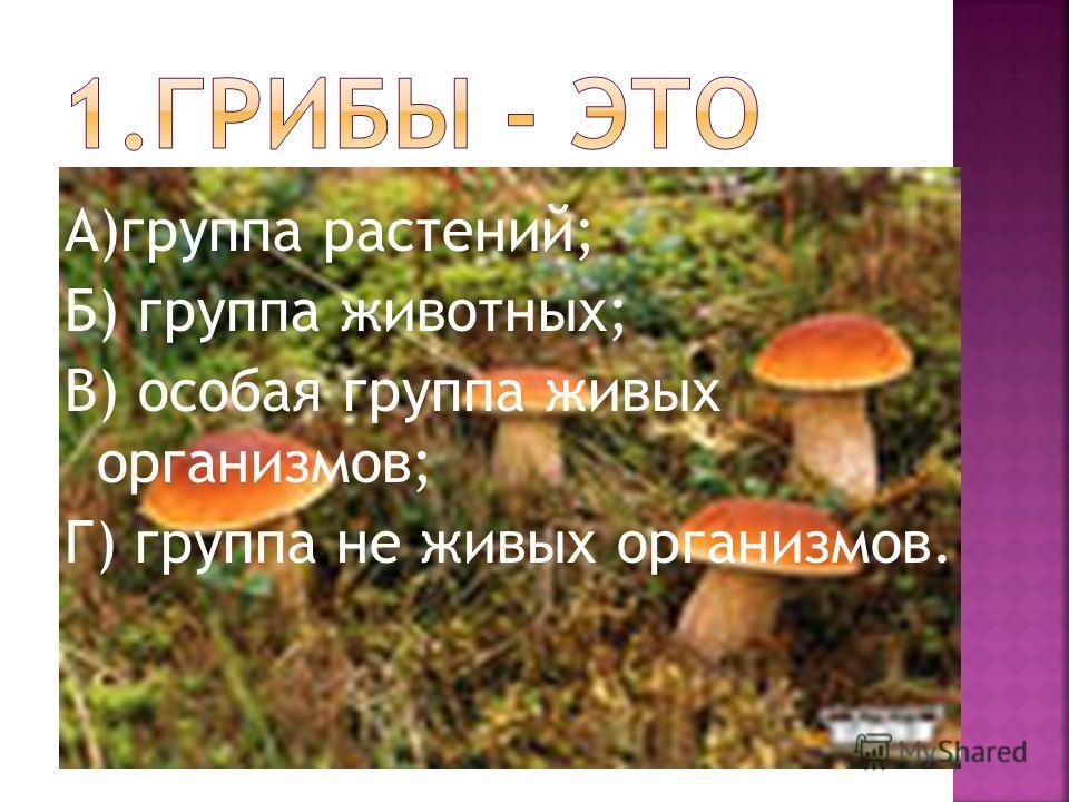 А)группа растений; Б) группа животных; В) особая группа живых организмов; Г) группа не живых организмов.