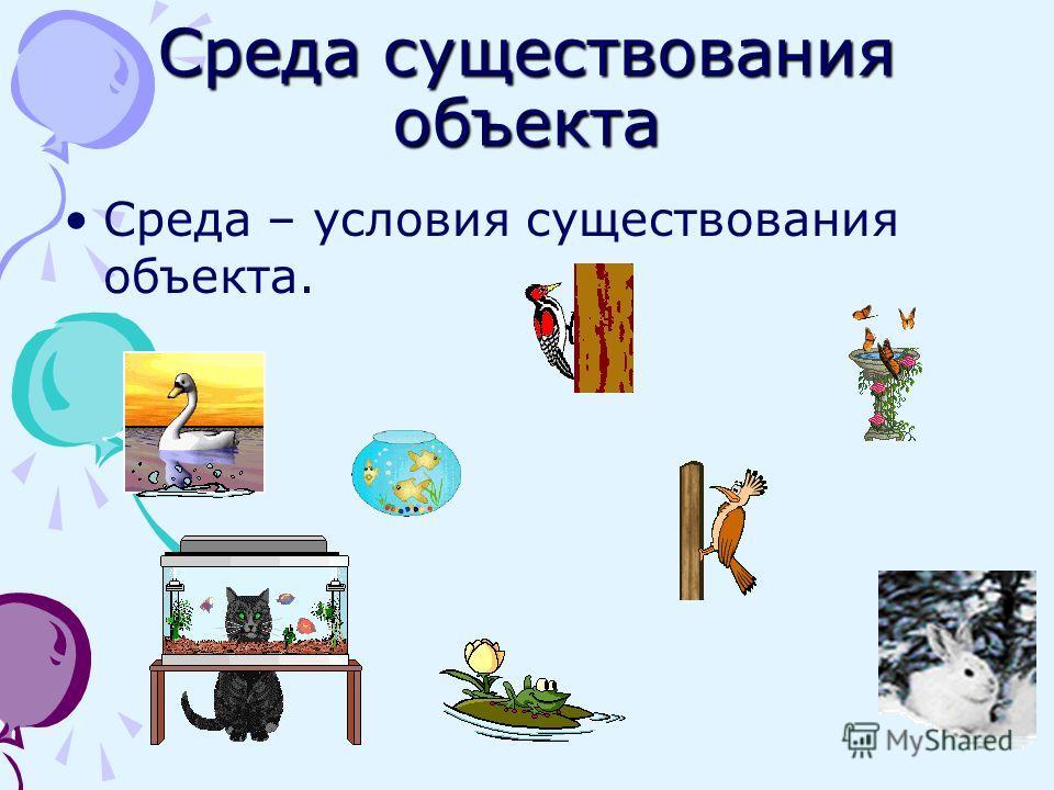 Среда существования объекта Среда – условия существования объекта.