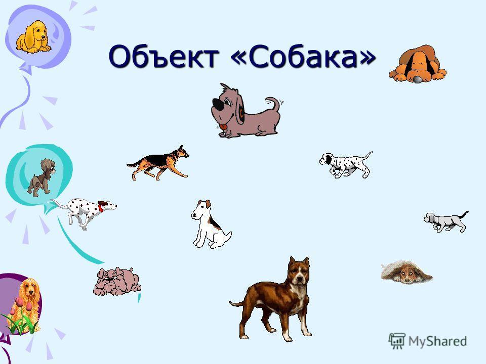 Объект «Собака»