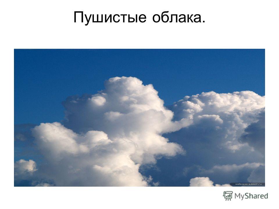 Пушистые облака.