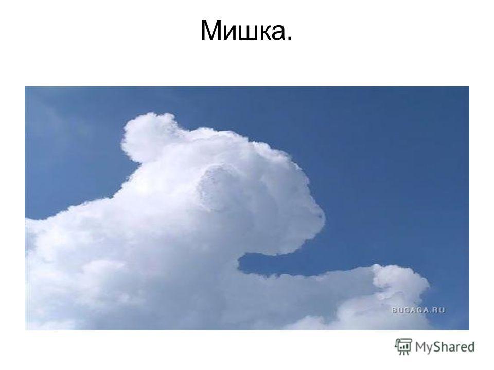Мишка.