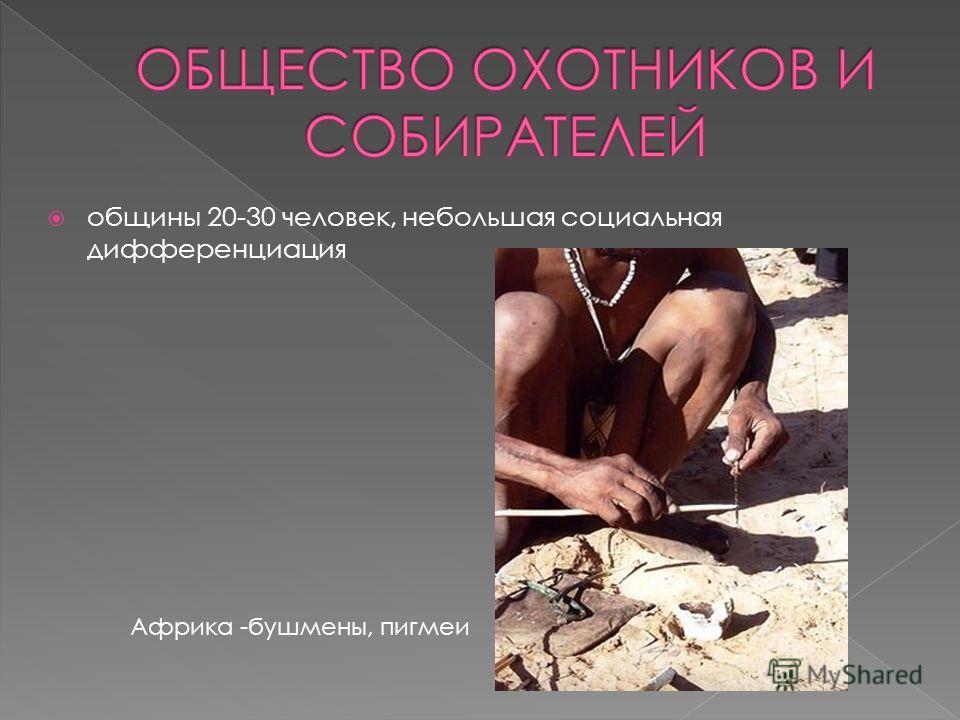 общины 20-30 человек, небольшая социальная дифференциация Африка -бушмены, пигмеи