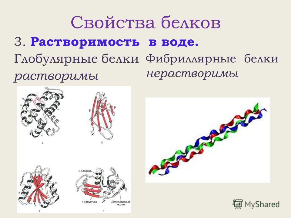 Свойства белков 3. Растворимость в воде. Глобулярные белки растворимы Фибриллярные белки нерастворимы