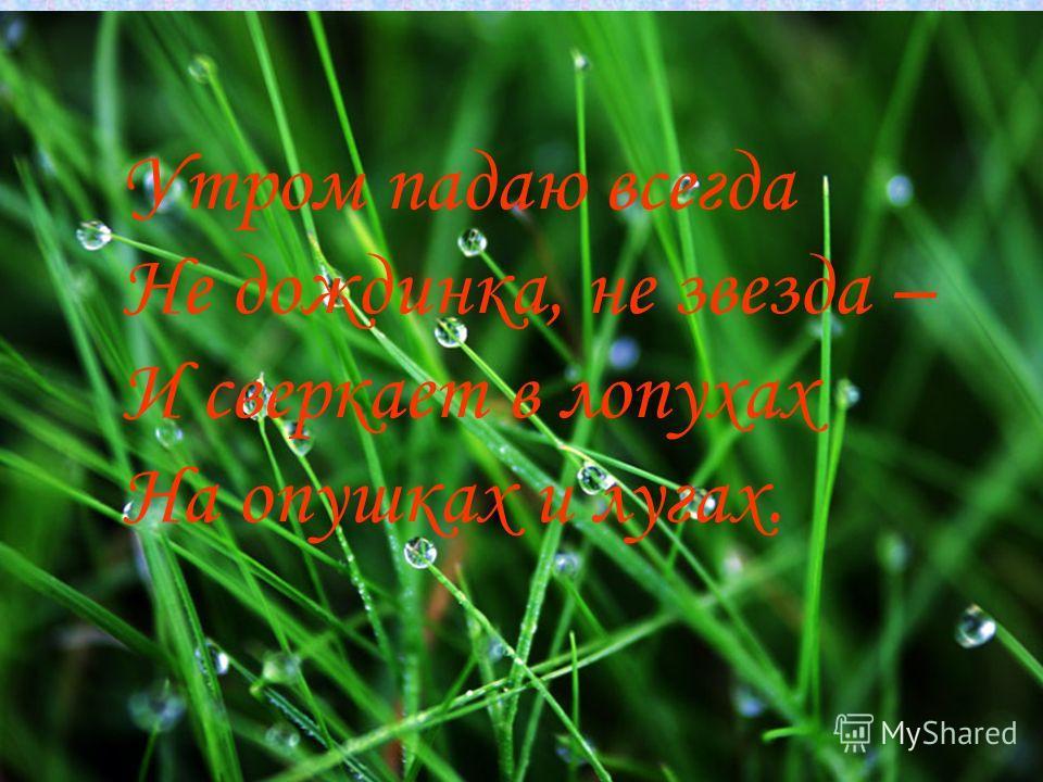 Утром падаю всегда Не дождинка, не звезда – И сверкает в лопухах На опушках и лугах.