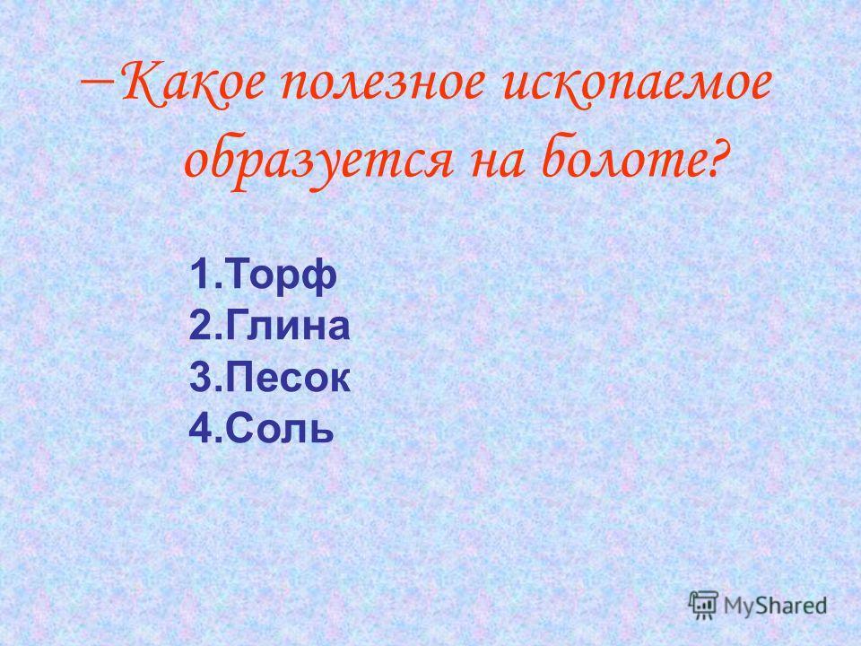 Какое полезное ископаемое образуется на болоте? 1.Торф 2.Глина 3.Песок 4.Соль