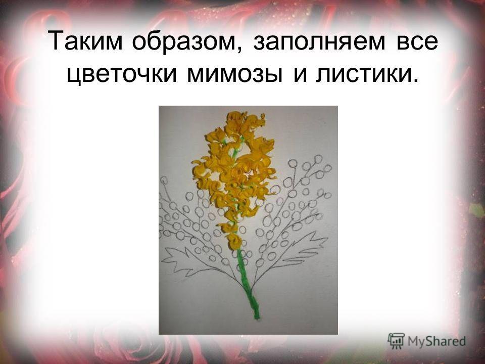 Таким образом, заполняем все цветочки мимозы и листики.
