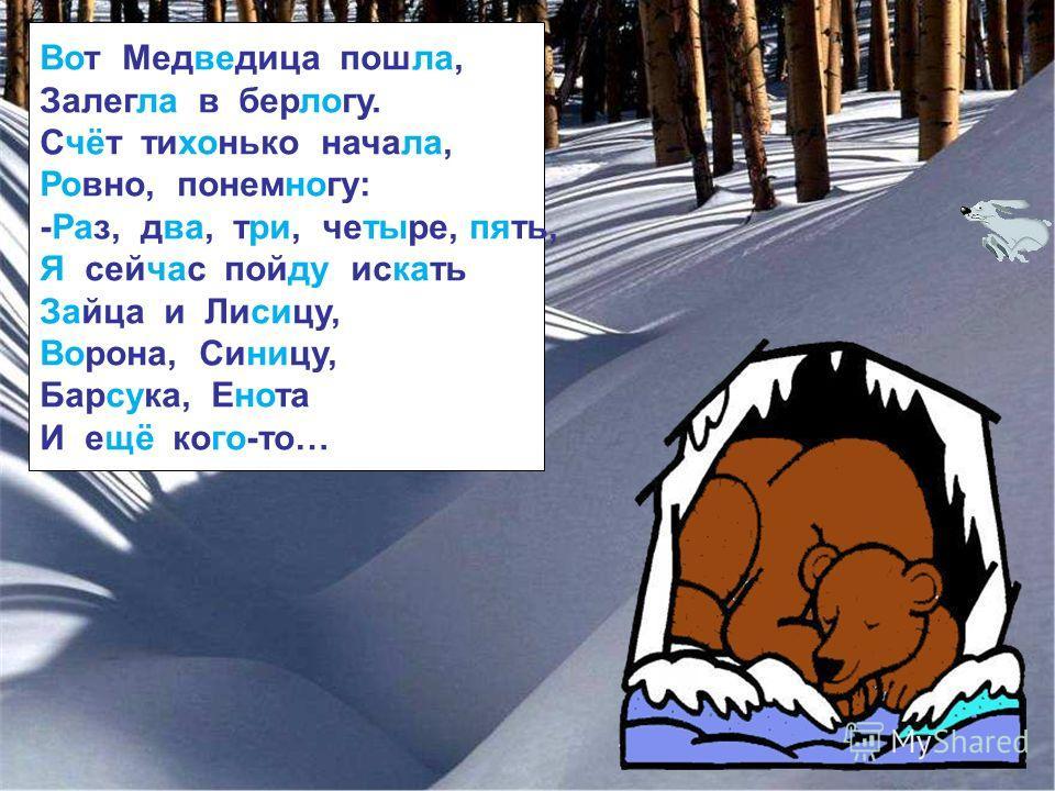 Вот Медведица пошла, Залегла в берлогу. Счёт тихонько начала, Ровно, понемногу: -Раз, два, три, четыре, пять, Я сейчас пойду искать Зайца и Лисицу, Ворона, Синицу, Барсука, Енота И ещё кого-то…