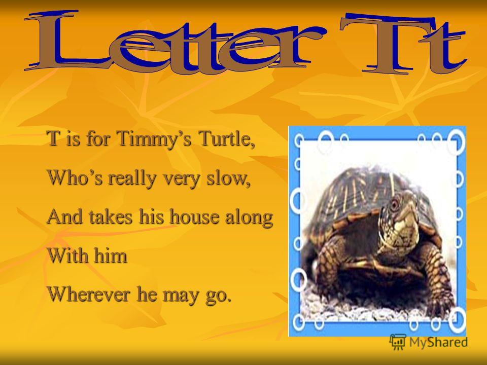 T is for Timmys Turtle, Whos really very slow, And takes his house along With him Wherever he may go.